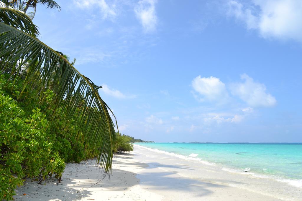 Новый год на Мальдивах по очень привлекательной цене!